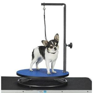 Top 6 Best Dog Grooming Tables 2020 Reviews Buyer S Guide