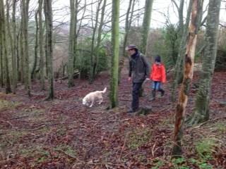 Following the truffle hound