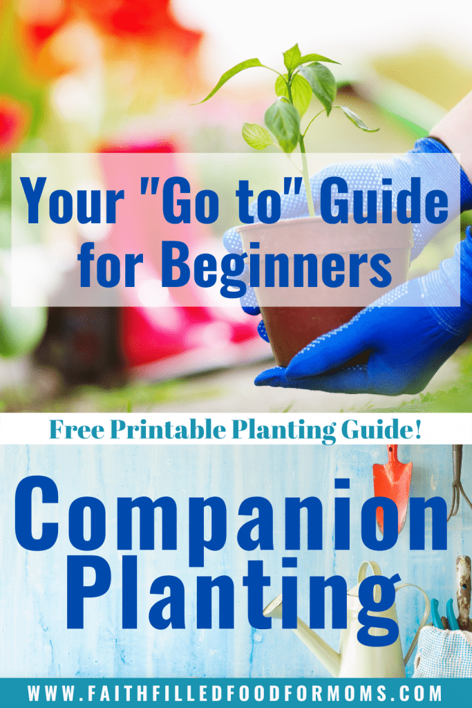 Companion Planting Your go to guide for beginners! Free Printable Planting Guide