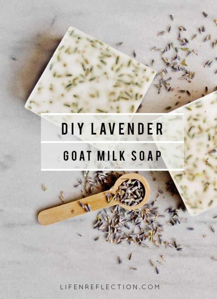 Make DIY Lavender Goat Milk Hand Soap