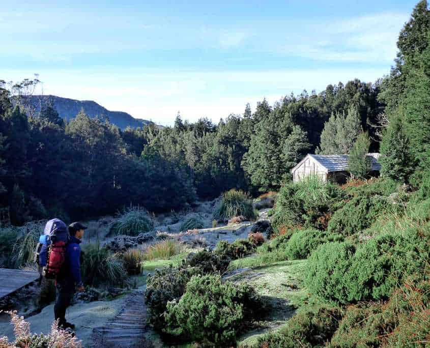 Ducane Hut on the Overland Track surround by beautiful green trees