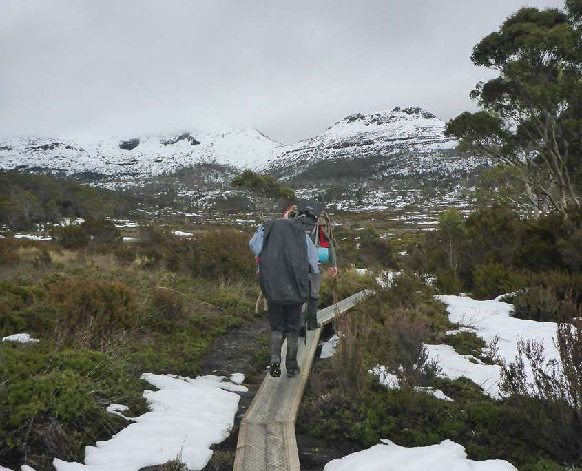 Trekking alond the Overland Track boardwalks with snow on the mounatins in the distance