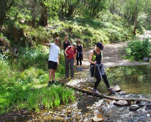 Walking across Alum Creek on the Six Foot Track
