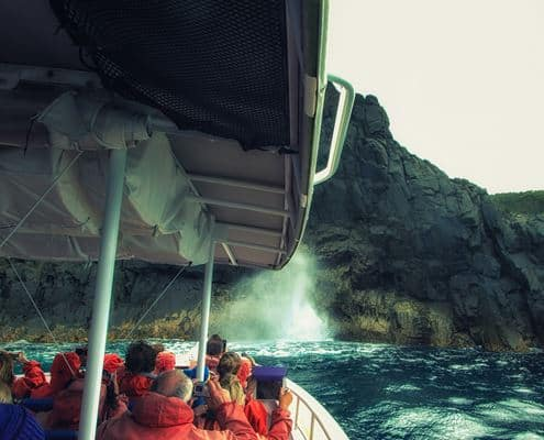 Pennicotts wilderness cruise on Three Capes Track