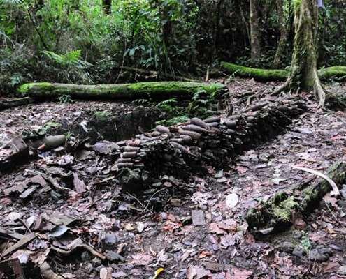 Lefy over ammunition on the Kokoda Track