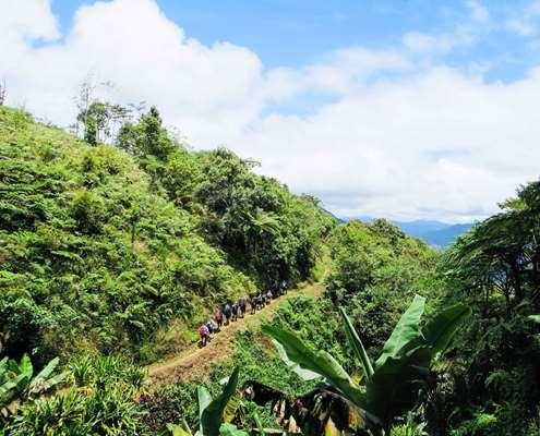 Trekking through rainforest vistas on the Kokoda Track