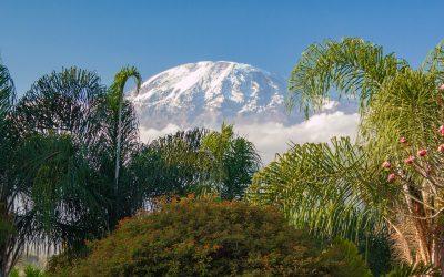 Guida alle vie per scalare il Kilimangiaro