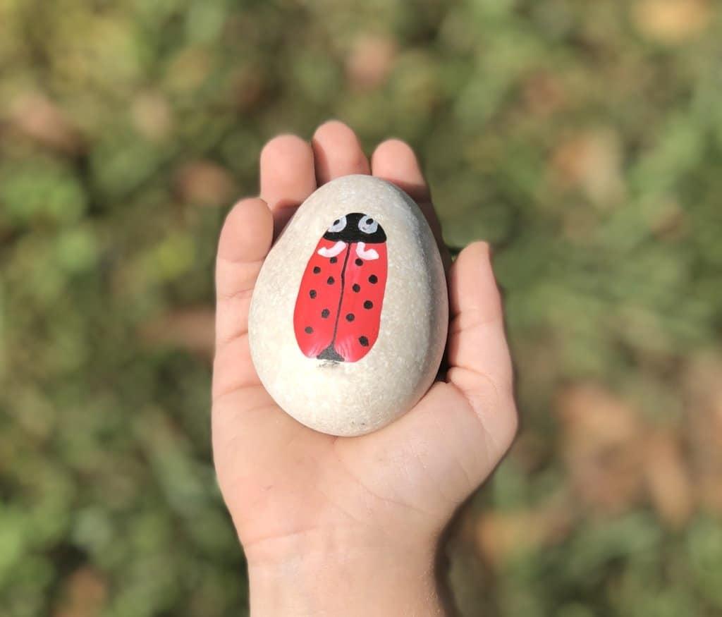 lady bug Stone