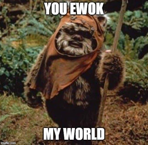 ewok love quote