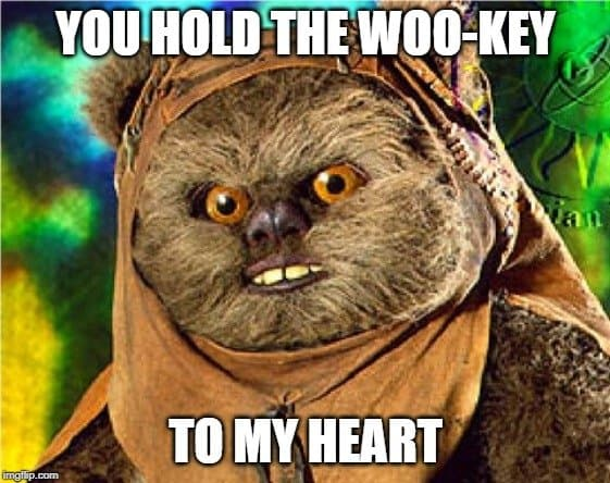 wookey from star wars quote
