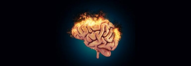 Cooling Brain Inflammation Naturally with Food