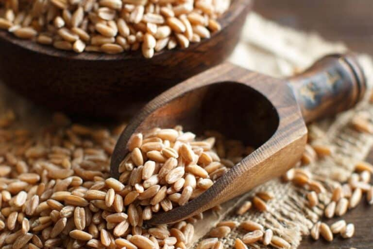 7 Takeaways about Grains from My Book Food: What the Heck Should I Eat?