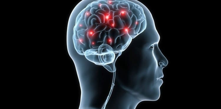 A Promising Compound Herbal Treatment for Vascular Dementia