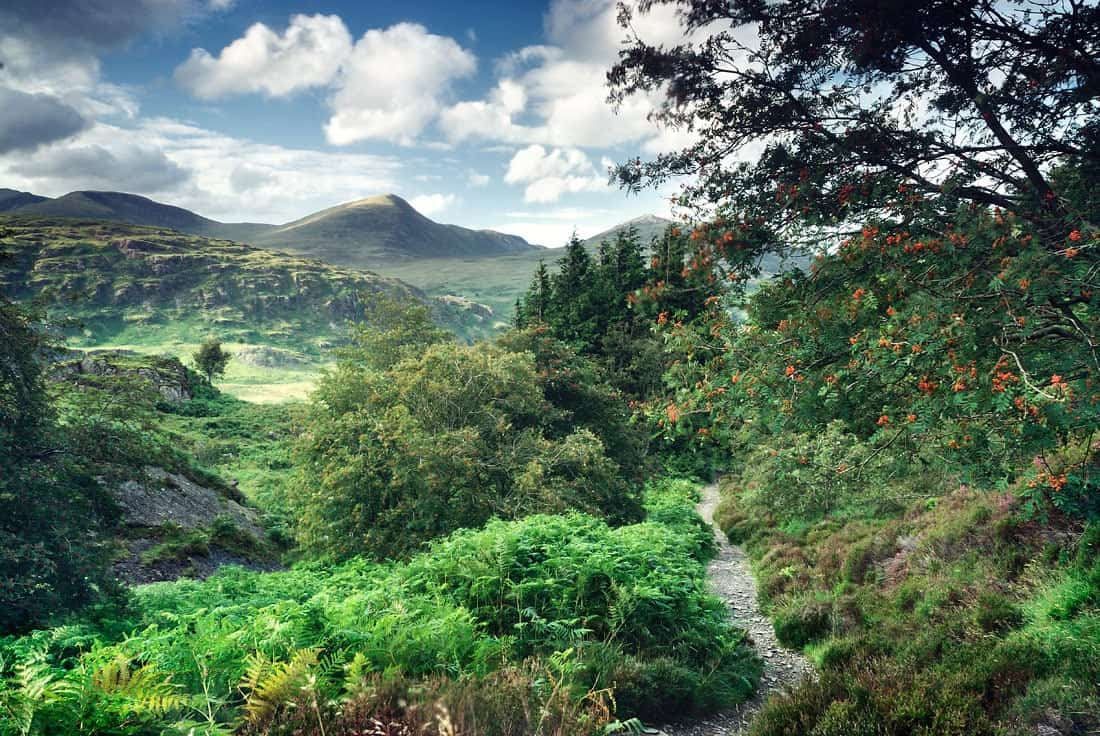 View from the footpath on the slopes of Moel Siabod, Snowdonia, Wales, UK