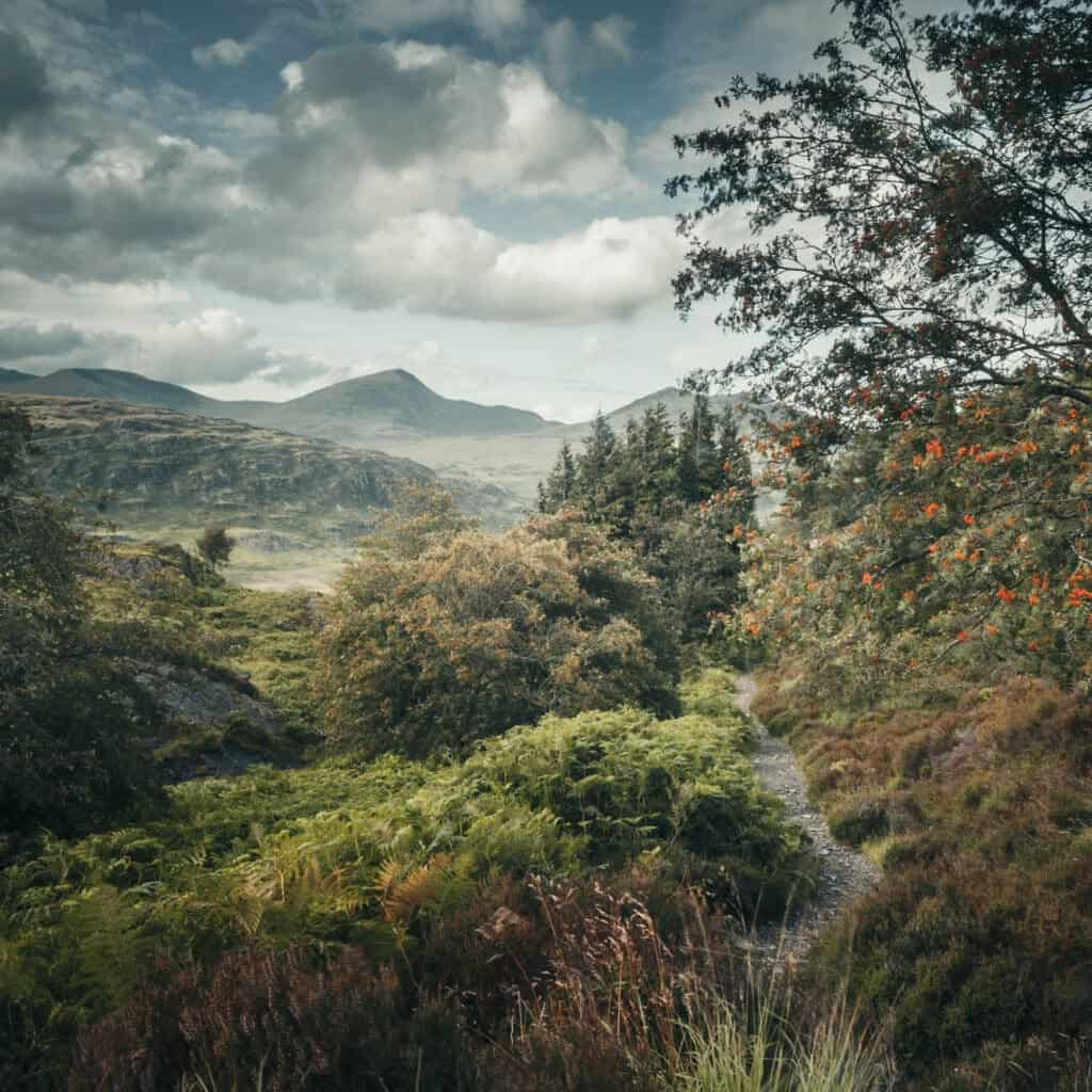 Atmospheric photograph of Moel Siabod, in Snowdonia national park in Wales.