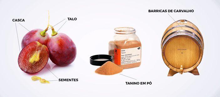 De-Onde-Vem-o-Tanino-do-Vinho-2