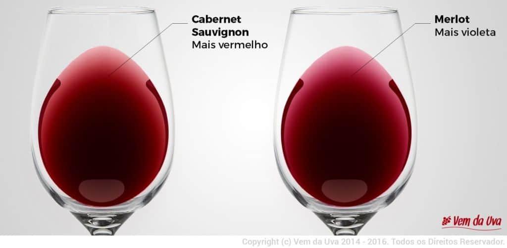 Cor-Cabernet-e-Merlot-1024x502.jpg