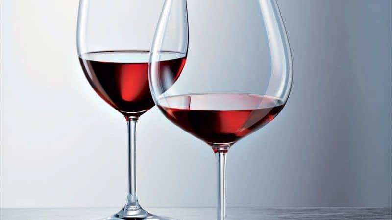 taça-vinho-pinot-800x450.jpeg