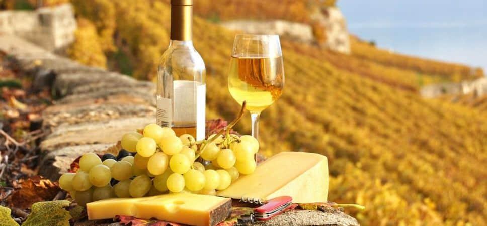uvas-de-vinho-branco-968x450.jpg