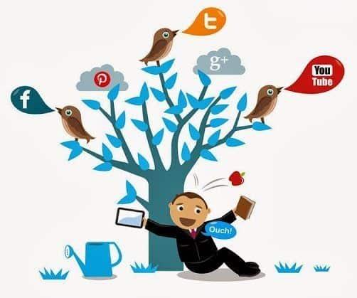 trenduri social media