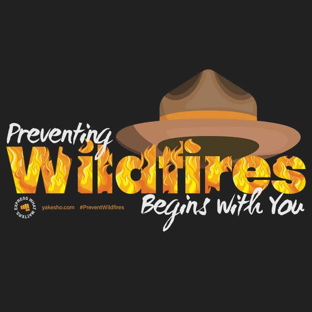 Preventing Wildfires Design