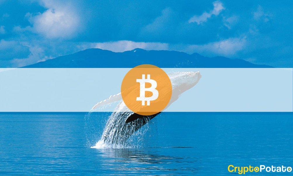 cumpărați bitcoin în iran