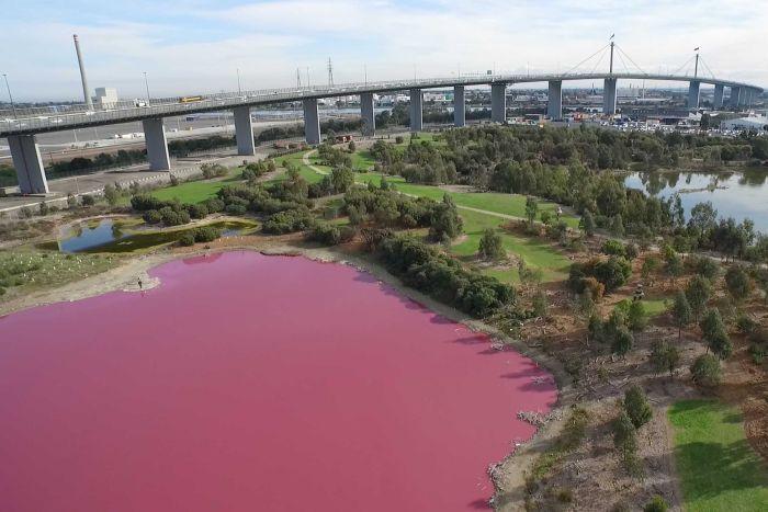 westgate-lake-pink-lake-melbourne