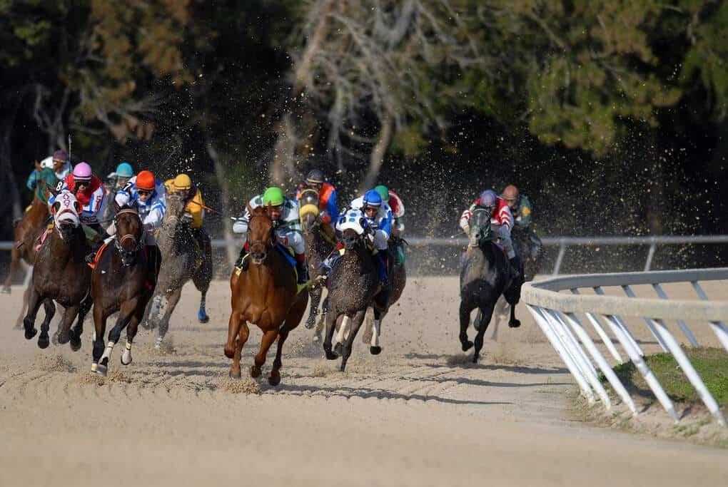 Horse Racing British Traditions