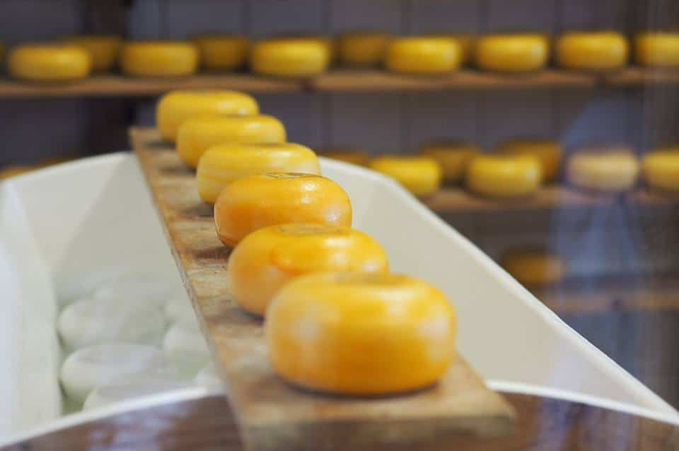 Zaanse Schanse Cheese - The List of the Best Cheese in the World