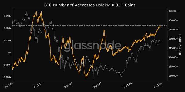 Ví Bitcoin từ 0,01 BTC trở lên.  Nguồn: Glassnode