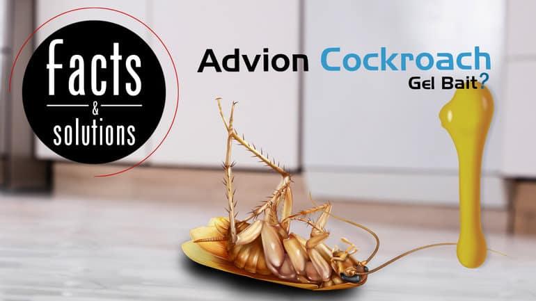 Заголовок иллюстрации мертвого таракана рядом с большой аппликацией гелевой приманки для тараканов Advion