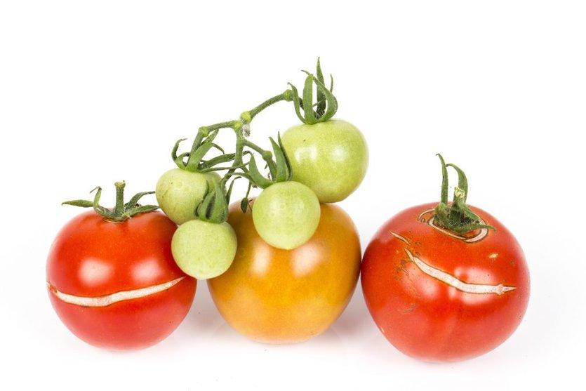 割れる トマト