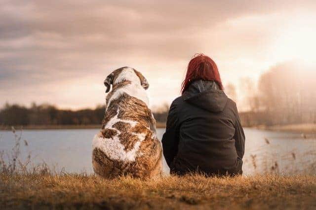 kunstschule-jever.de - Singlebörse für Tierliebhaber