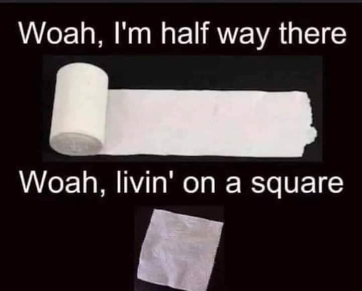 Toilet Paper Memes 2020 Coronavirus Toilet Paper Shortage