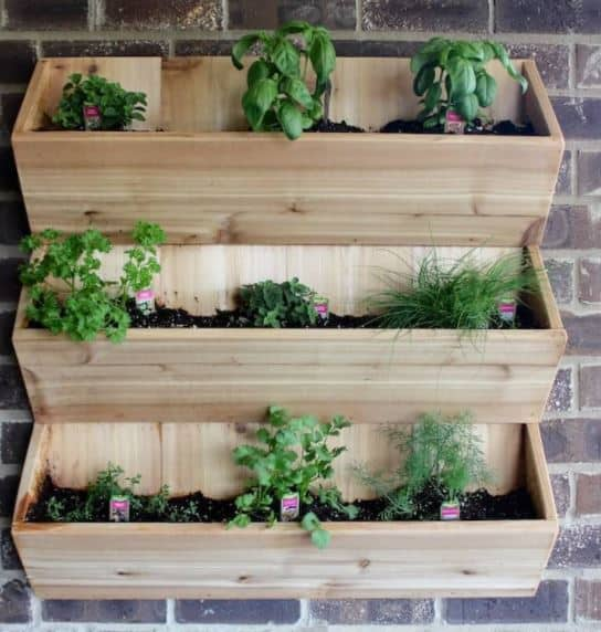 20 Outstanding Diy Vertical Gardens With Pictures