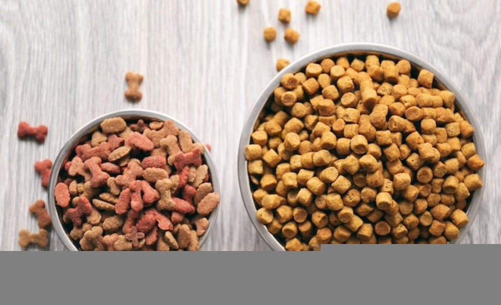 The Best Dog Food >> 8 Best Dog Foods For Dogs With Sensitive Stomachs 2020 Reviews