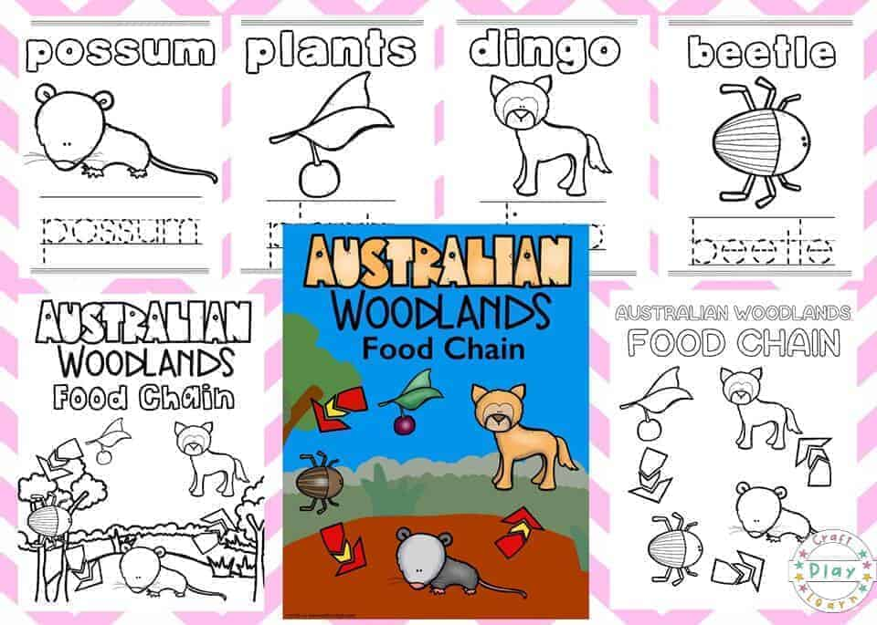 Australian Woodland Animal Coloring Pages - Craft Play Learn