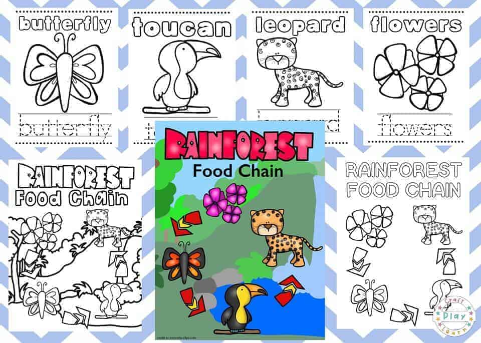 Rainforest Coloring Pages For Kids - Craft Play Learn
