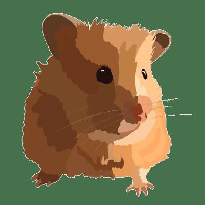 Small animal rescue edinburgh
