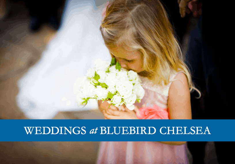 Bridesmaid photograph by Douglas Fry on front of Bluebird brochure