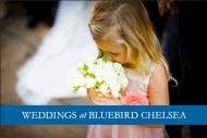 Front Bluebird Wedding brochure - Photograph by Douglas Fry of Bridesmaid